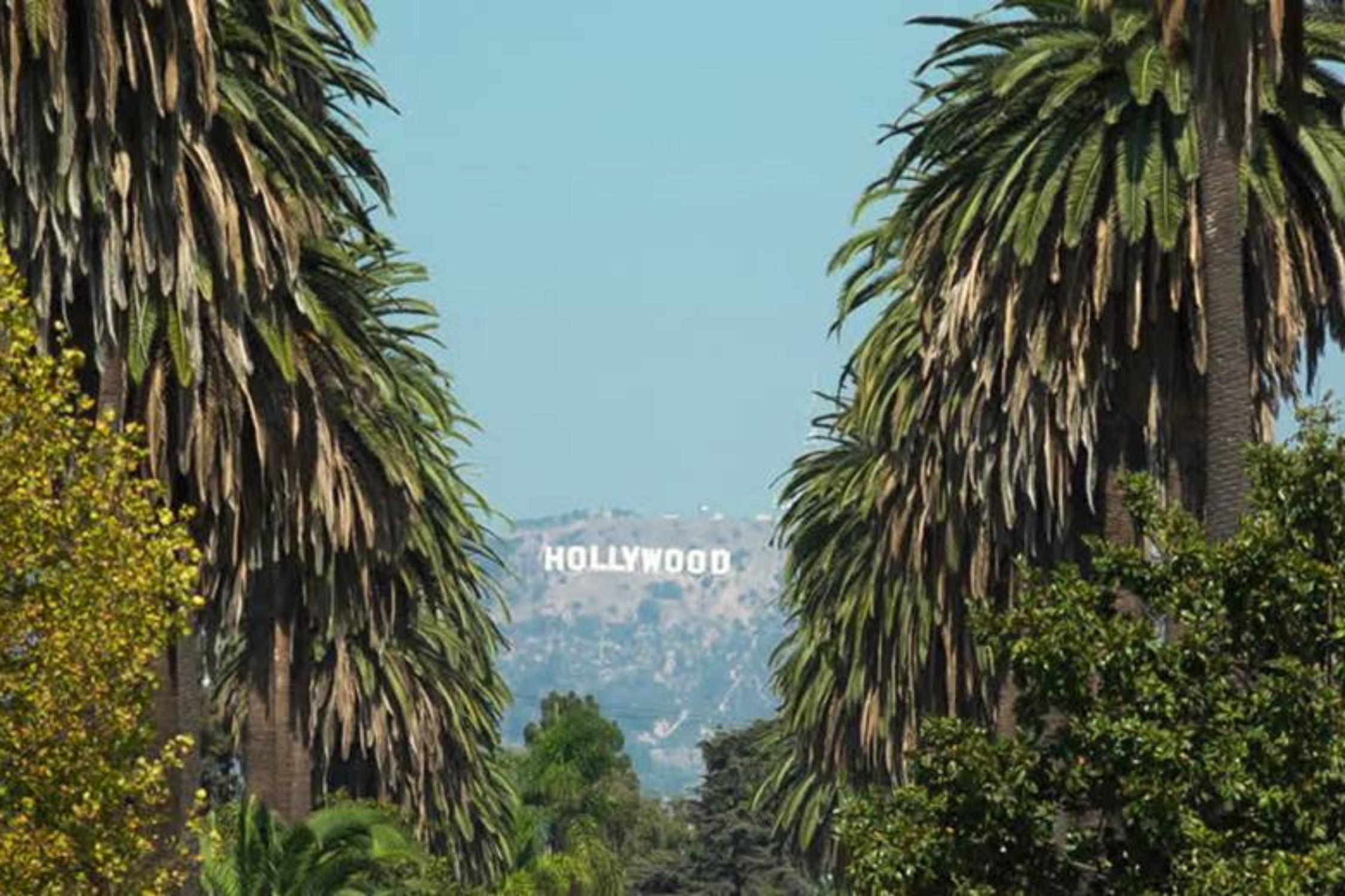 Hollywood Sign-image0032